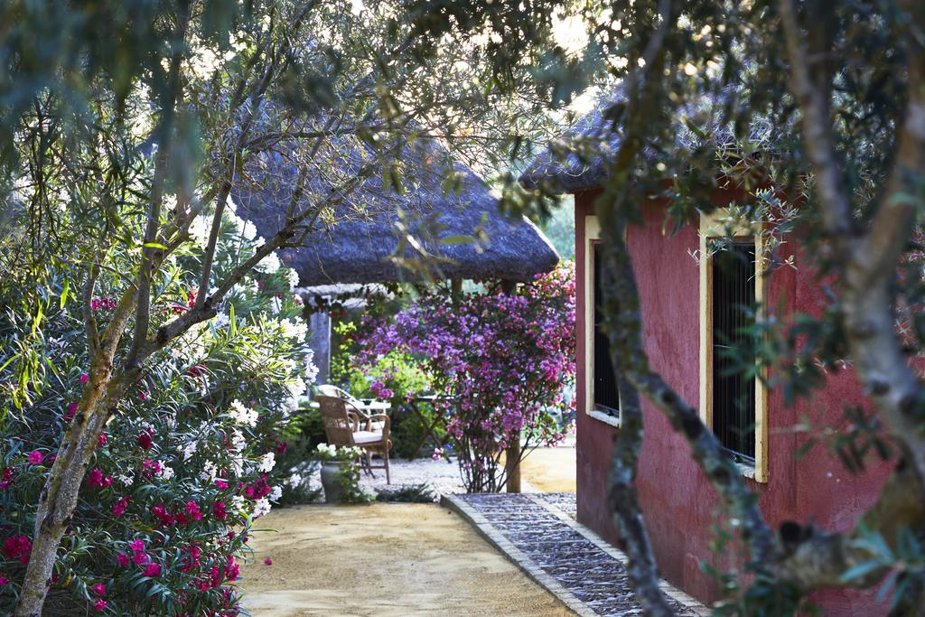 yoga-hotel-yoguihotel-hacienda-san-rafael-jardin